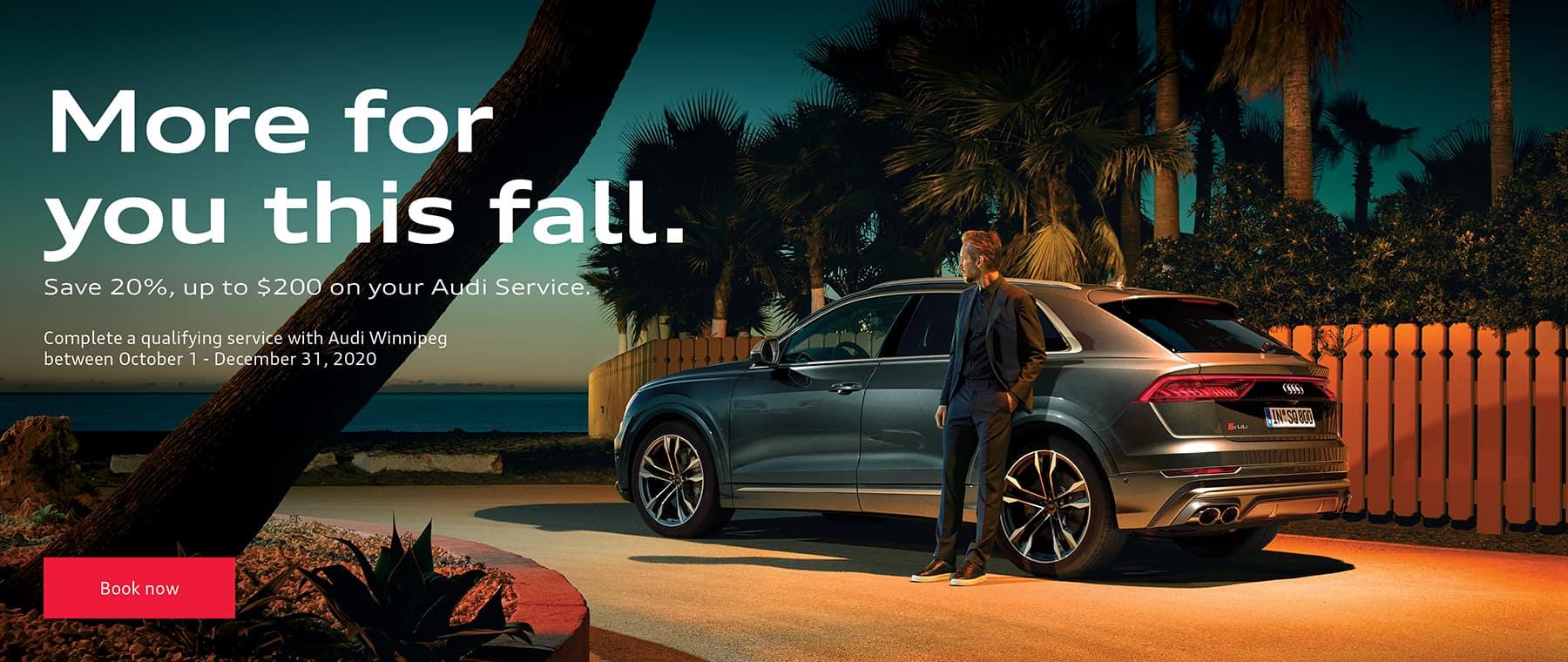 Audi-Wpg-Service-Offer_-_Web-Banner