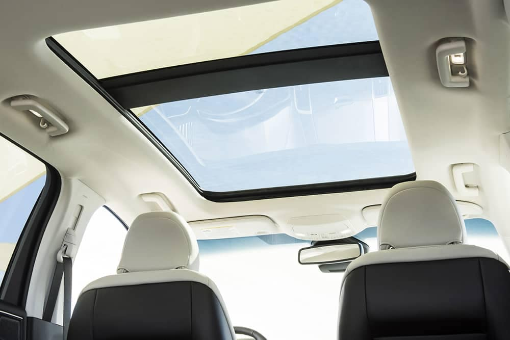 2020 Ford Edge Vista Roof