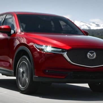 2018 Mazda CX5 Canada Driving Past Forest
