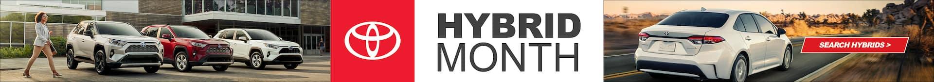 Hybrid Month
