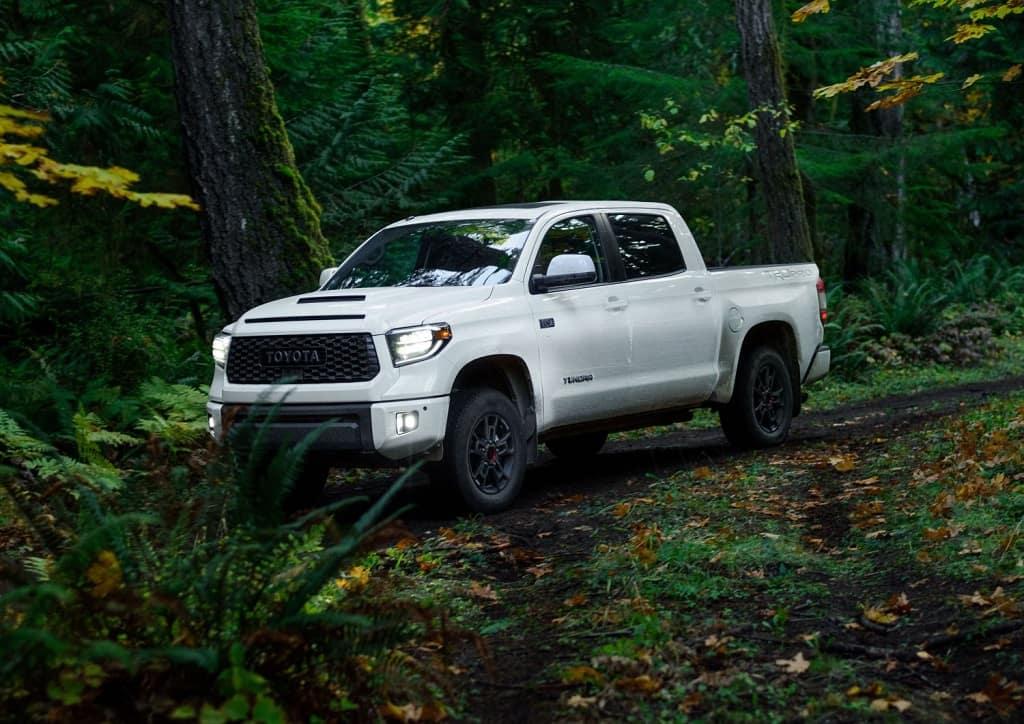 Toyota Tundra Near McCall