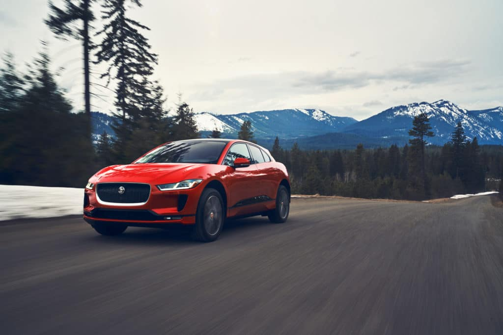 Do You Own a Jaguar?