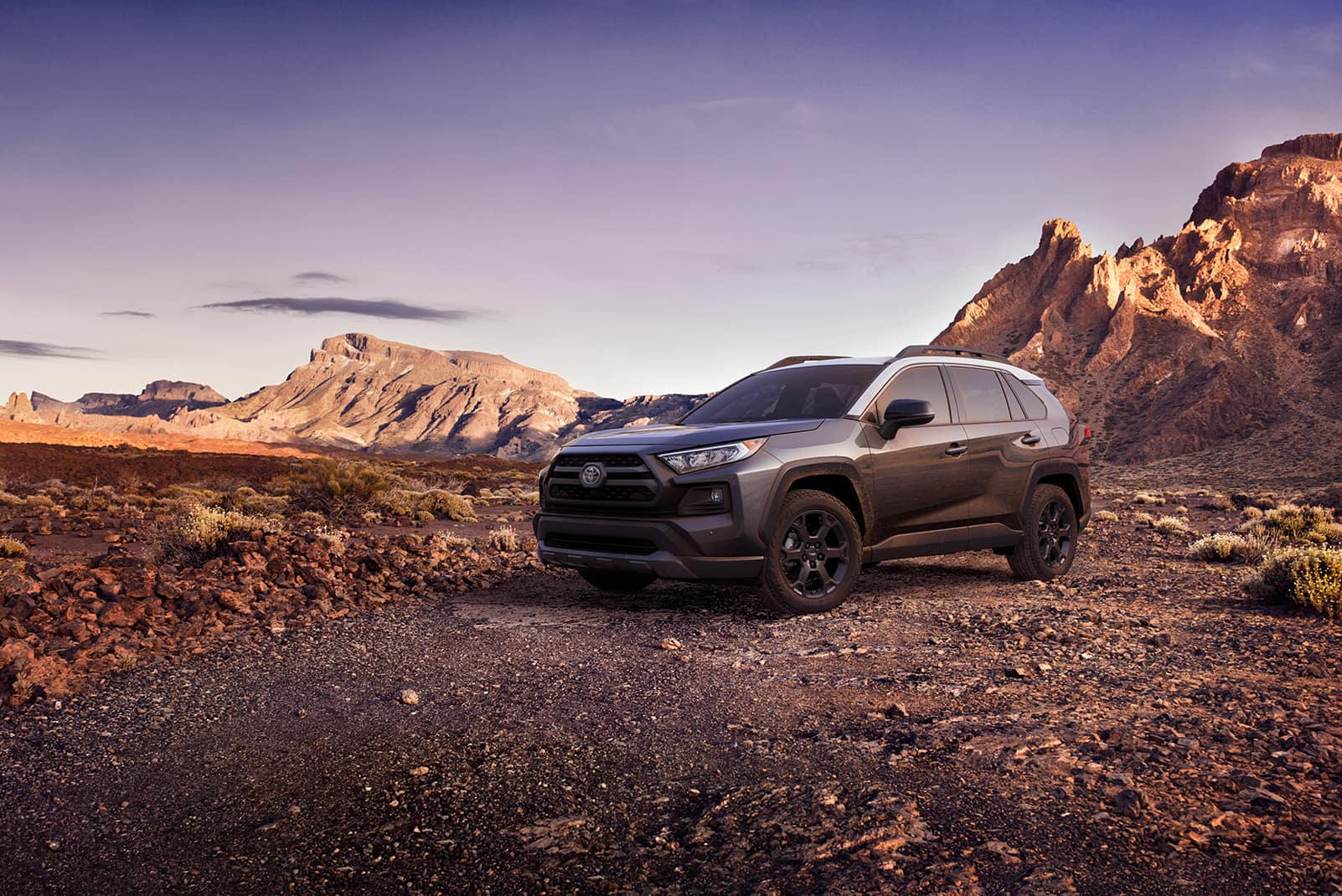 Performance features of the 2020 Toyota RAV4 at Jim Coleman | grey 2020 RAV4 parked on mountain terrain