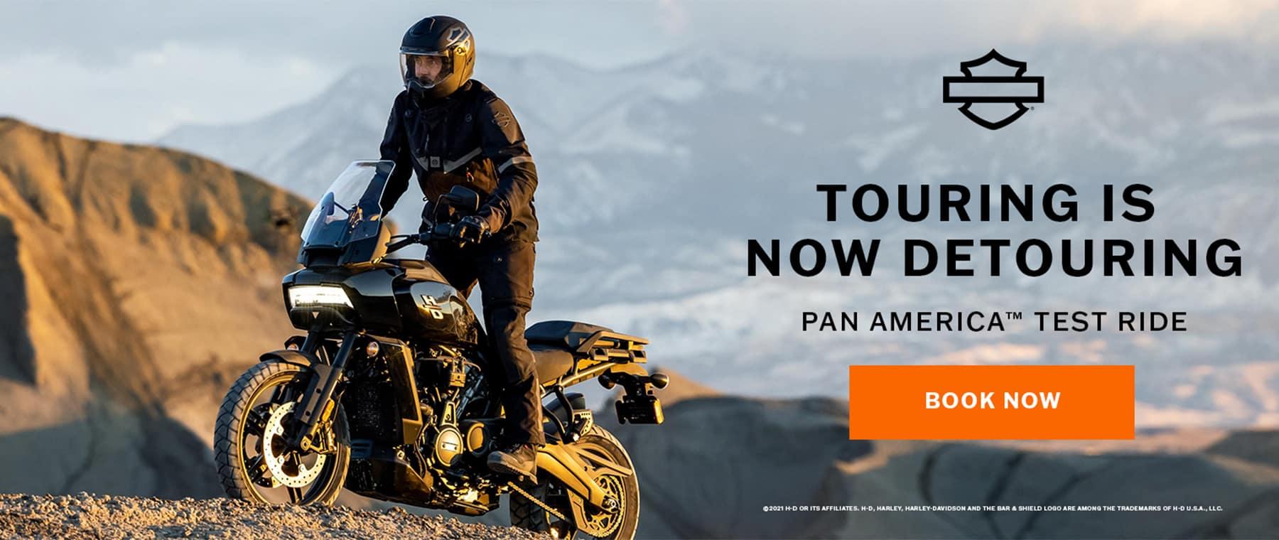 Website Banner – Pan America