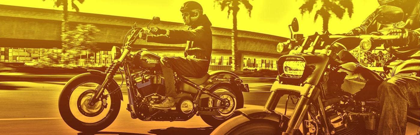 Harley-Davidson Bikes on Highway