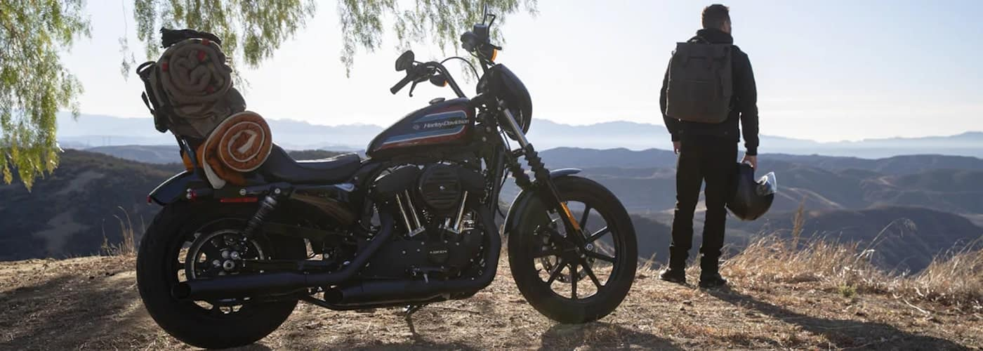 Man Standing Near Harley with Helmet Off Looking into Valley