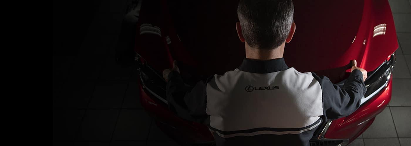 Lexus Warranty Header