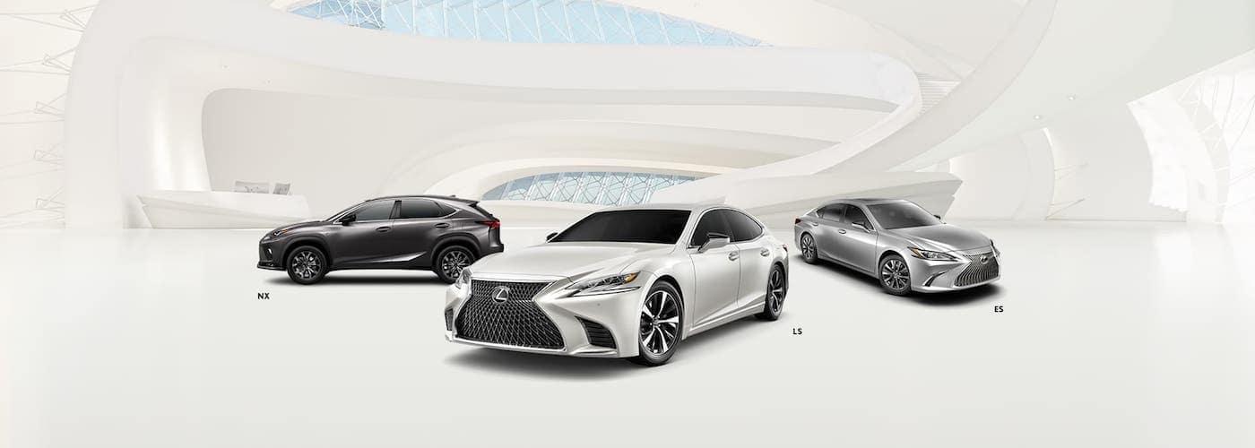 Lexus Models in Showroom