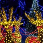 Lighted reindeer Christmas decorations