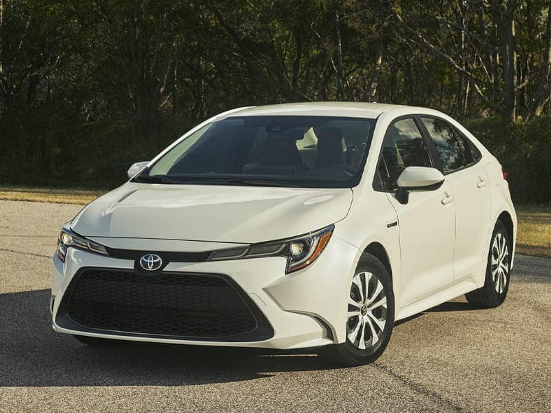 2021 Toyota Corolla Hybrid Exterior and Interior Styling
