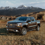 2020 chevrolet silverado 1500 black exterior parked in field