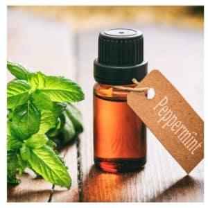 peppermint oil, peppermint plant, vile, hang tag, wood grain
